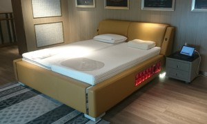 Dynasleep bed with active spring units